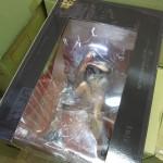 JR古市橋より徒歩10分、YAMATO『ダイナマイト計画#001 一騎当千関羽雲長 エクストラカラー 』を買取らせいただきました!